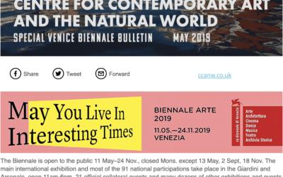 Venice Bulletin