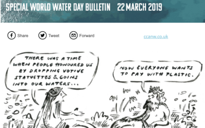 World Water Day Bulletin